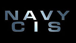 Logo: Navy CIS
